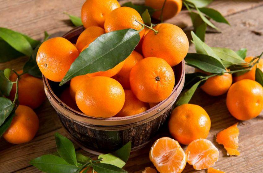 Sedam razloga zašto mandarine moraju da se nađu na vašoj trpezi!