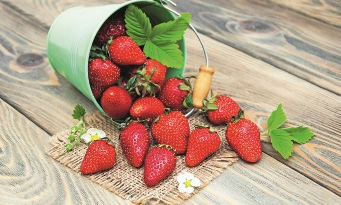 Tri razloga zašto treba jesti jagode